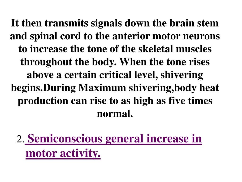 It then transmits signals down the brain stem and spinal cord to the anterior motor neurons to increase the tone of the skeletal muscles throughout the body. When the tone rises above a certain critical level, shivering begins.During Maximum shivering,body heat production can rise to as high as five times normal.