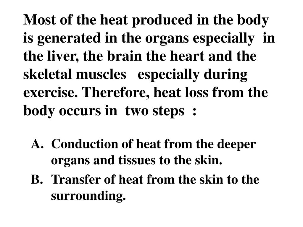 Most of the heat produced in the body is generated in the organs especially  in the liver, the brain the heart and the skeletal muscles   especially during exercise. Therefore, heat loss from the body occurs in  two steps  :