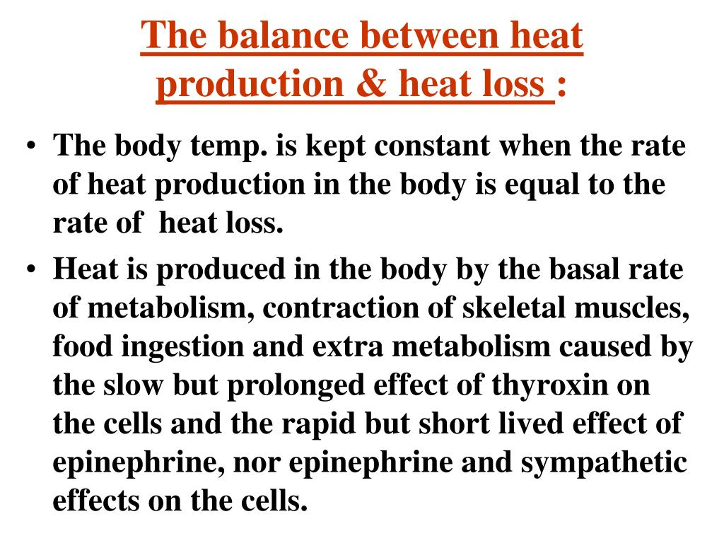 The balance between heat production & heat loss