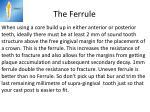 the ferrule