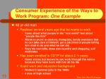 consumer experience of the ways to work program one example