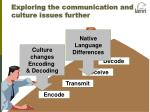 exploring the communication and culture issues further