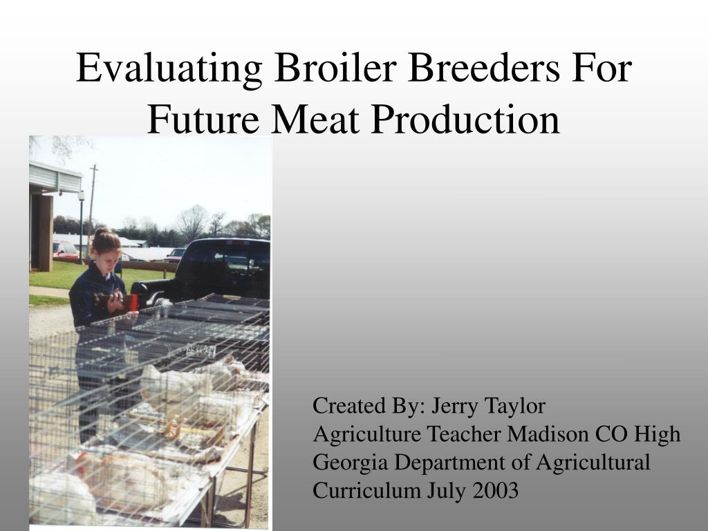 evaluating broiler breeders for future meat production l.