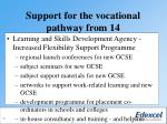 support for the vocational pathway from 14
