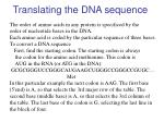 translating the dna sequence