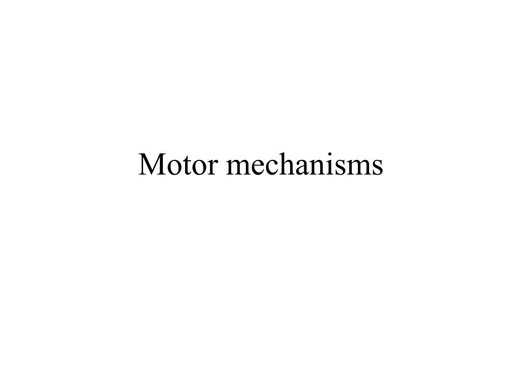 motor mechanisms l.