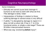 cognitive neuropsychology2
