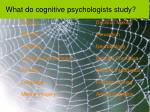 what do cognitive psychologists study