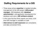 staffing requirements for a gis