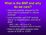 what is the bnp and why do we care