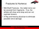 fractures to humerus11