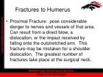 fractures to humerus12
