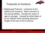 fractures to humerus13