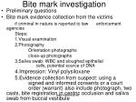bite mark investigation