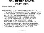 non metric dental features