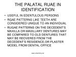 the palatal ruae in identification