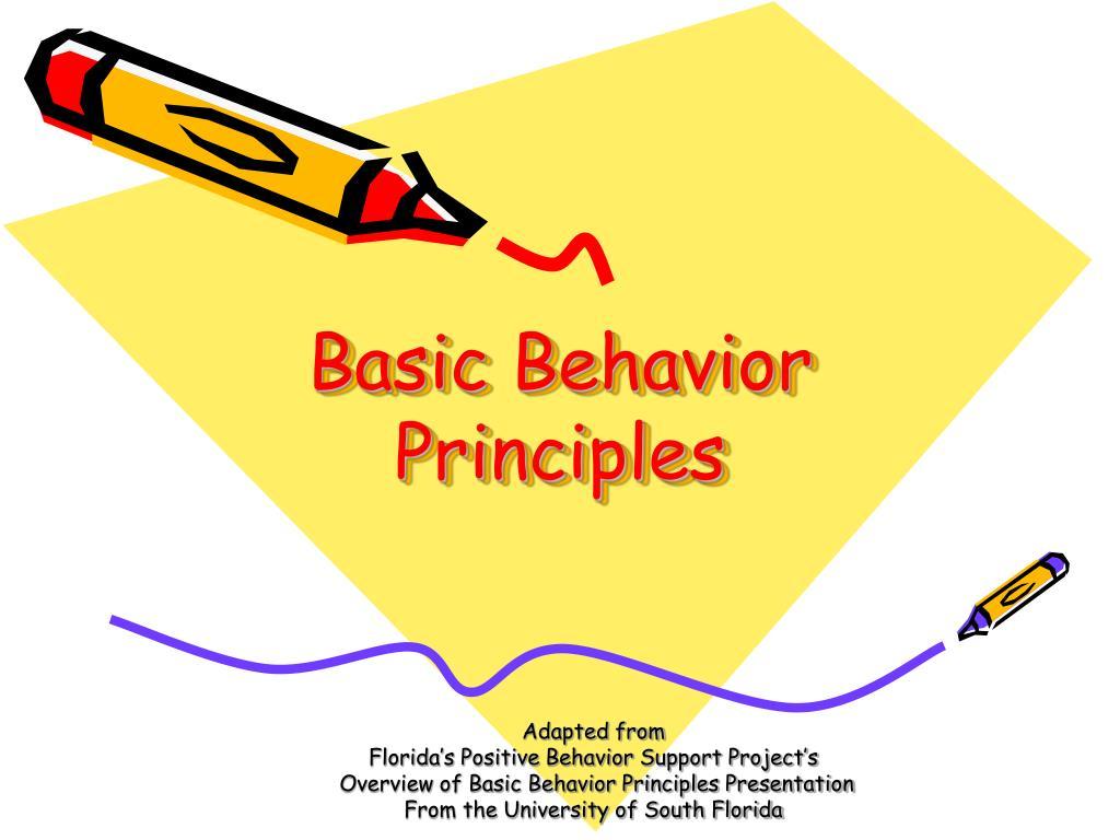 basic behavior principles l.
