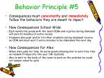 behavior principle 5