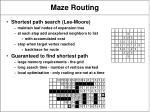 maze routing3