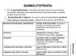 quimiolitotrof a
