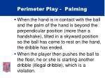 perimeter play palming