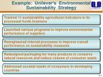 example unilever s environmental sustainability strategy