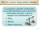what is a social responsibility strategy