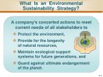 what is an environmental sustainability strategy