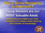 why is shrine mentoring so important