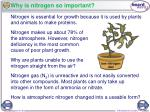 why is nitrogen so important