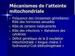 m canismes de l atteinte mitochondriale
