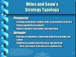 miles and snow s strategy typology