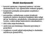 model skandynawski