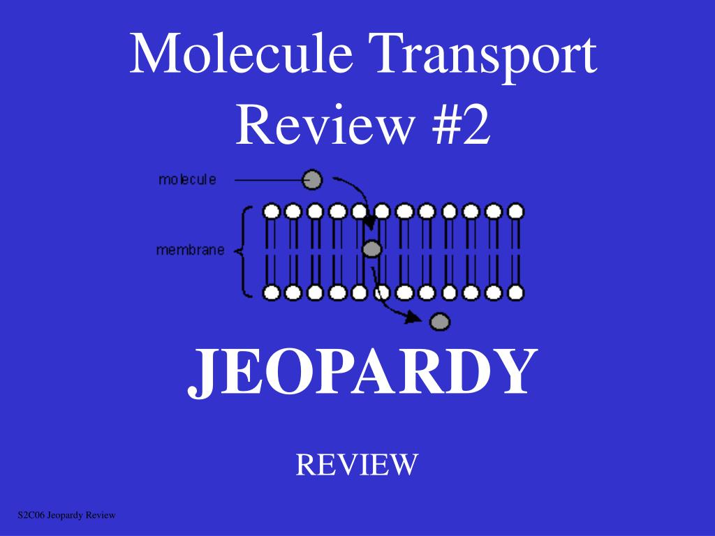 molecule transport review 2 l.