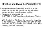 creating and using the parameter file