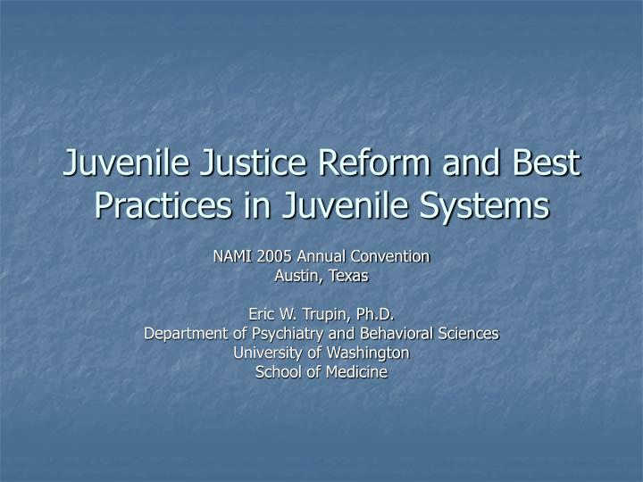 juvenile justice reform and best practices in juvenile systems n.