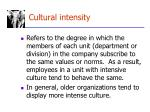 cultural intensity