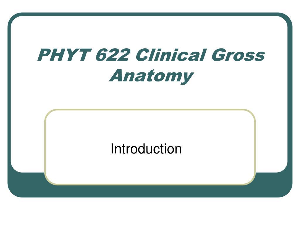 phyt 622 clinical gross anatomy l.