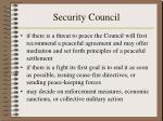 security council12