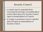 security council13