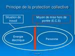 principe de la protection collective