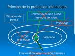 principe de la protection intrins que