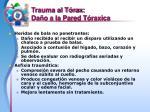 trauma al t rax da o a la pared t raxica14