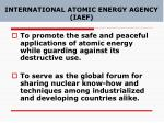 international atomic energy agency iaef