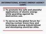 international atomic energy agency iaef