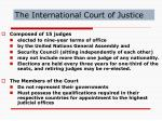 the international court of justice10