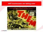 ant businesses are taking over