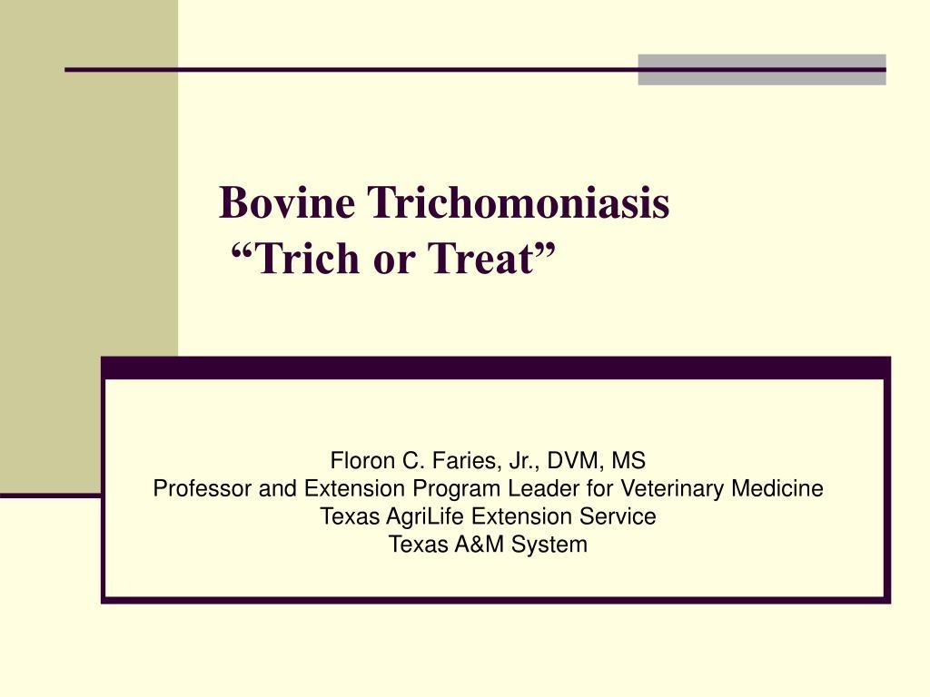 bovine trichomoniasis trich or treat l.