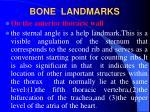 bone landmarks