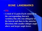 bone landmarks14
